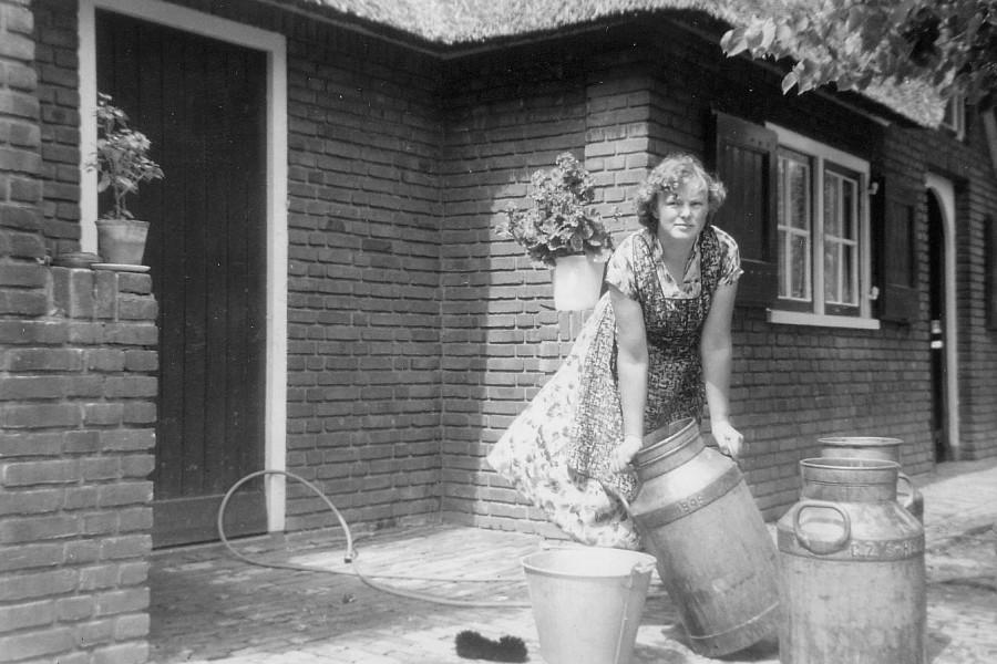 schoon Tsjechisch dik in Genemuiden